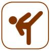 ikon_kickboxning